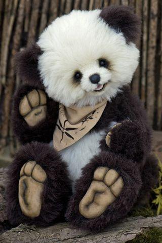 Bear1772