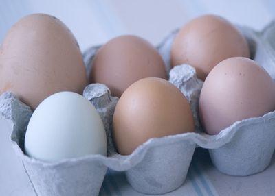 Eggscopy