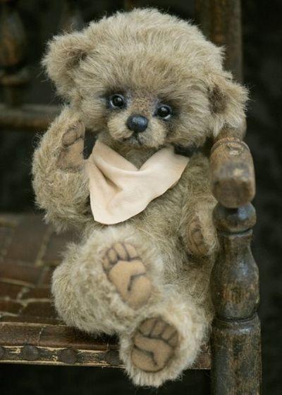 Bear33