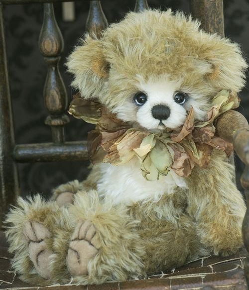 Bear55